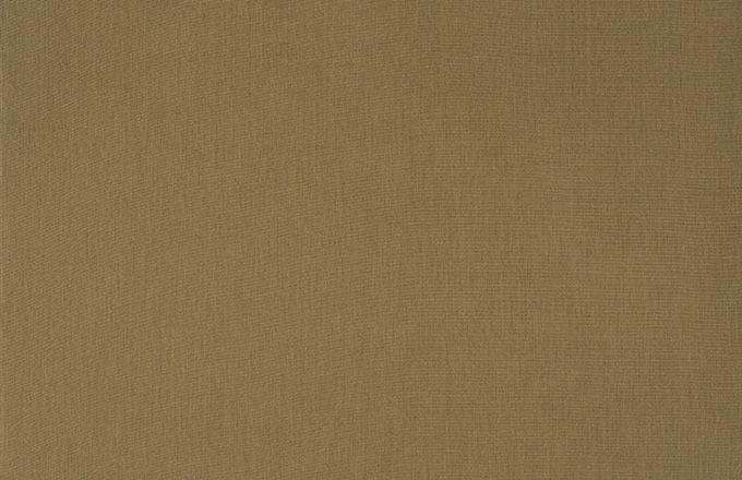 SJA 5476 137 Solids and Stripes Heather Beige